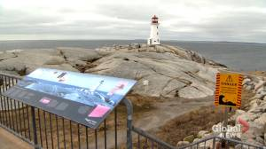 Mi'kmaq fear Peggy's Cove boardwalk will destroy sacred medicine (01:57)