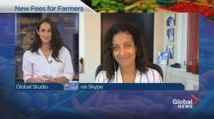 Anglade calls on Walmart to 'back down' on fee increase for Quebec farmers