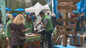 Taste of Edmonton, Heritage Festival face financial hardship – one may call it quits for good (01:43)