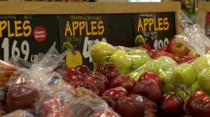 COVID-19 brings food insecurity to light in Saskatoon (01:56)