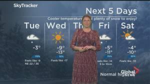 Global News Morning weather forecast: February 16, 2020 (02:18)