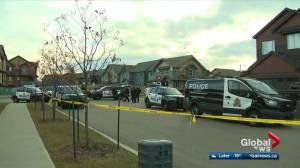 Police investigate 2 home invasions, 3 shootings across Edmonton (03:23)