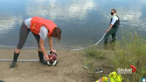 Researchers determining microplastic levels in South Saskatchewan River