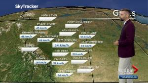 Edmonton afternoon weather forecast: Friday, July 23, 2021 (03:52)