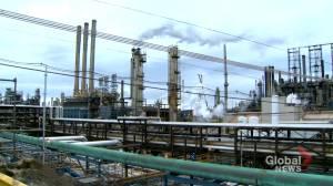 Environmental analyst calls Alberta oilsands producers' net-zero strategy 'wild cards' (01:44)