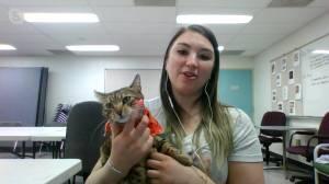 Adopt a Pet: Poppy the Kitten (03:32)