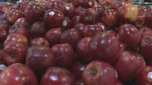 New report suggests Canadians remain generally confident in food industry (05:50)
