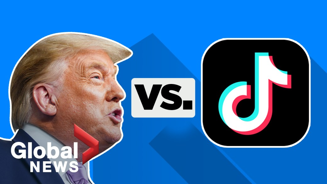 Click to play video 'Why does the Trump administration hate TikTok?'