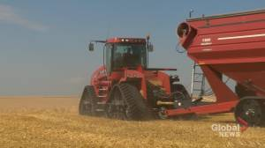 Farmers thankful Lake Diefenbaker irrigation project underway (01:32)