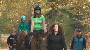 Local therapeutic riding group urging for trail etiquette