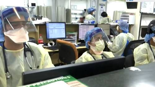 N.S. microbiology lab operating around the clock during COVID-19 | Watch News Videos Online