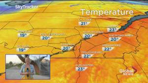 Global News Morning weather forecast: May 29, 2020