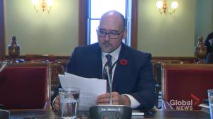 President and CEO of Cannabis NB says profitability is still a distant goal