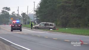 1 dead following minivan crash on Hwy. 35 in City of Kawartha Lakes: OPP (00:37)