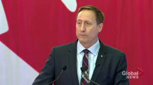 Peter MacKay says he's done his part to unite Canadian Conservatives 'under one big blue tent'