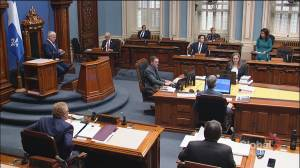 Government's handling of pandemic prompts heated debate at National Assembly (02:17)