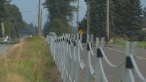New fence being built on U.S/Canada border (02:02)