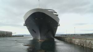 Victoria council considers limiting cruise ship traffic