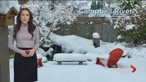 B.C. evening weather forecast: February 14 (02:38)