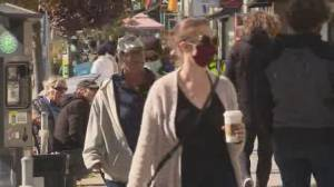 Ontario health experts plead for tighter restrictions, stay-at-home orders (03:33)