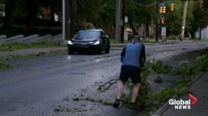 Hurricane Larry lashes Newfoundland, bringing heavy rain and wind (01:16)