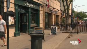 Small business confidence riding high in Alberta: CFIB report (01:51)