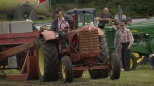 Langley farmers pull together to save summer tradition