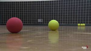 Dodge the Streets 1st annual dodgeball tournament in support of YESS