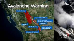 Avalanche warning issued for much of Alberta's mountain parks (02:00)
