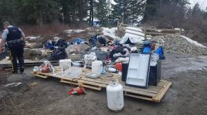 Raw video of RCMP and Okanagan Forest Task Force at abandoned camp on Beaver Lake Road (00:13)