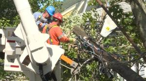 Hurricane Dorian: Restoring power after storm likely to take days