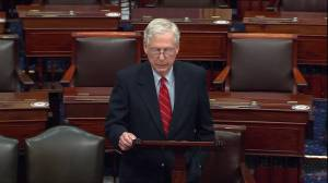 US election: McConnell says Trump within his rights to look into election 'irregularities'; Schumer says 'no evidence' of significant voter fraud (03:11)