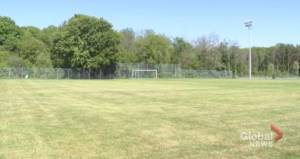Sports teams can practise, but no games permitted yet in Peterborough