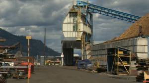"""The future doesn't look good,"" no signs of the Tolko mill in Kelowna getting up and running anytime soon"