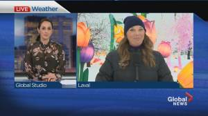 Global News Morning weather forecast: Thursday January 28, 2021 (01:50)
