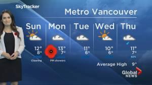 B.C. evening weather forecast: Nov. 9