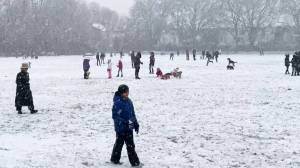 Rare London snowfall brings joy during COVID-19 lockdown (02:56)