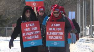Elementary teachers walk the picket line while contract negotiations resume