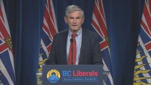 BC Liberal Leader Andrew Wilkinson says he'll step down (01:55)