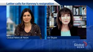 'This is an open challenge to the leadership of Jason Kenney': MRU political scientist of Loewen resignation (04:38)