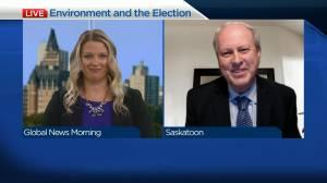 Saskatchewan Environmental Society's hopes ahead of election day (04:33)