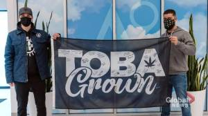 Manitoba man takes to the steps of legislature demanding end to prohibition on home-grown cannabis (01:34)