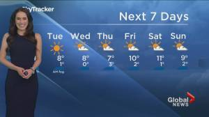 B.C. evening weather forecast: November 29 (02:37)