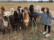 Play video: Peterborough-area family farm becomes petting zoo during coronavirus pandemic