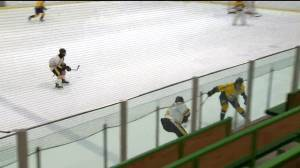 HIGHLIGHTS: WHSHL Garden City vs J.H. Bruns – Dec. 18