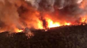 Australia bushfires: ongoing crisis prompts massive international response