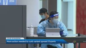 Experts say more action needed to curb variant spread and potential 3rd wave (02:33)