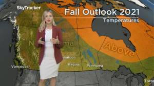 First day of fall: what weather can Calgary expect to see? (03:56)