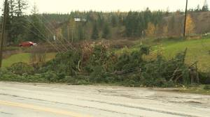 Powerful wind and rain storm leaves a path of destruction in the Okanagan