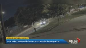 Toronto police release surveillance video in hope of solving alleged hit-and-run